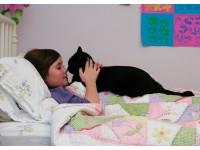 Вирусные заболевания кошек и собак передающиеся человеку